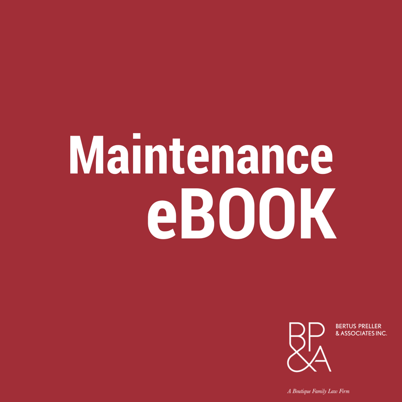 Maintenance and Child Support eBook